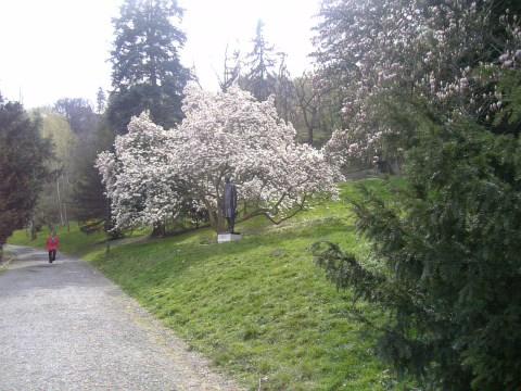 まだまだ春♪