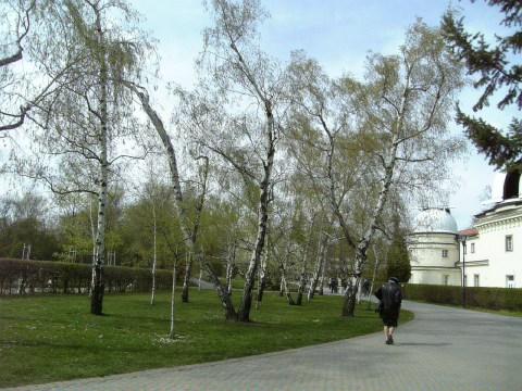 1日散歩〜プラハ〜Ⅳ