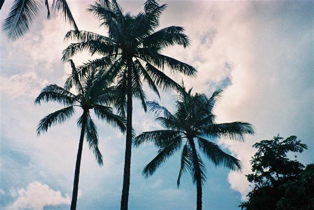 Hawaiiの空